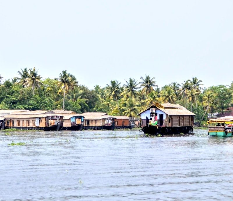 view of traditional boats on the river in Kerala, India