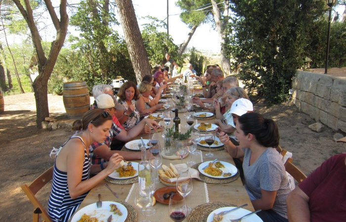 a group of travelers having lunch in a garden with trees, all are on the two sides of a very long wooden table