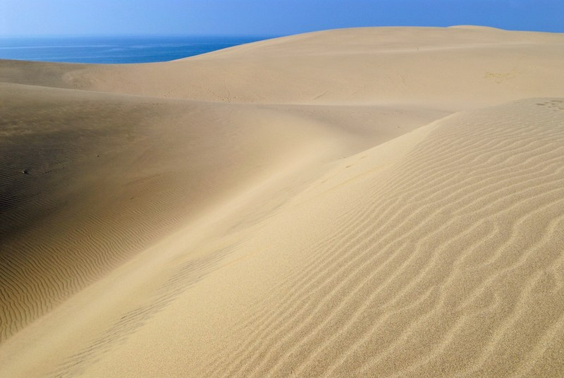 sand dune in the island of Tottori